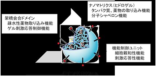 20081208-nanogel1_s