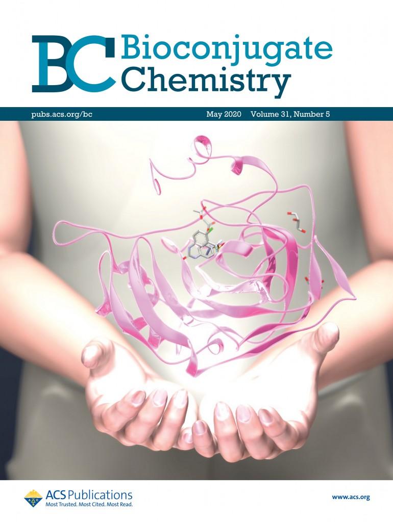 T. Nishimura et al., Bioconju. Chem., 2020