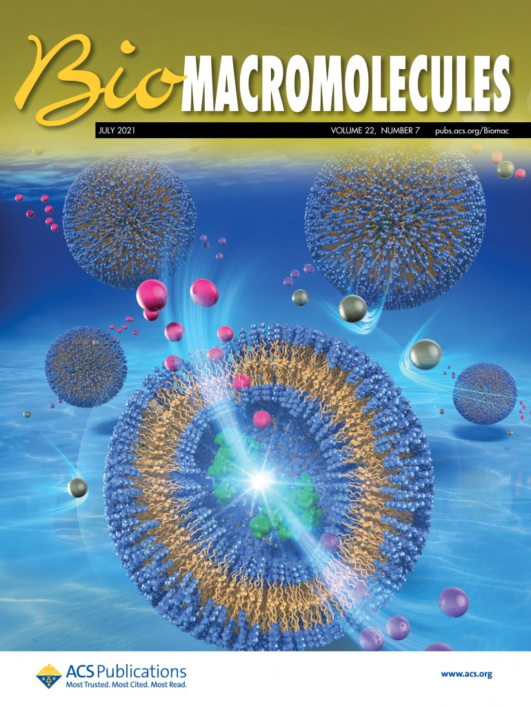 Y. Okuno et al., Biomacromolecules, 2021